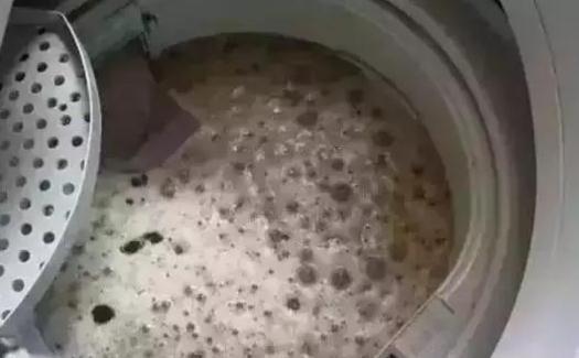 洗衣机的正确清洗方式:来点儿白醋小苏打