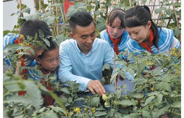 师生精心培育太空蔬菜品种