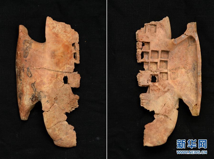 秦咸陽城遺址發現罕見戰國晚期卜甲