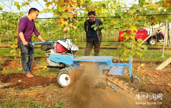 新型果园作业机械助力秋冬果园管理